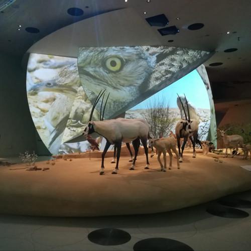 el-nuevo-museo-nacional-de-qatar-la-rosa-de-nouvel-con-alma-espanola